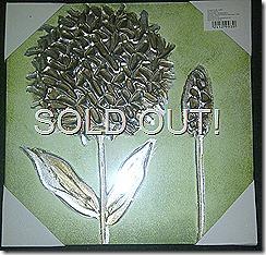 24129930 Hand Painted Metalic Aluminium Canvas-Green 2 IMG-20120521-01091
